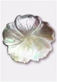 Pendentif hibiscus en nacre 40 mm gris x1