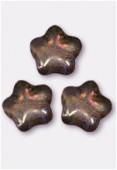 Etoile 8 mm lumi brown x12