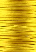 Queue de rat jaune d'or 3 mm x1m